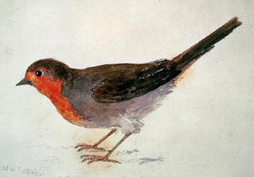 John M. W. Turner, Watercolor of a Robin