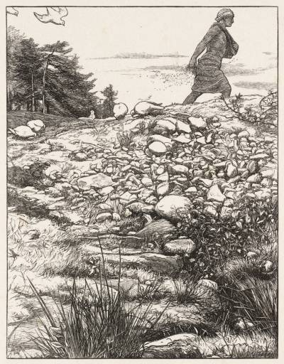 Parable of the Sower, John Everett Millais